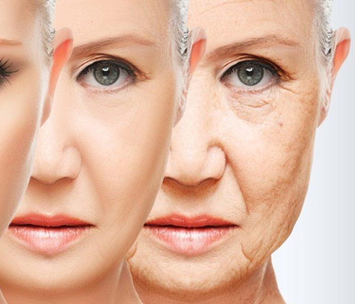 Menopausa – Tratamento Natural do processo de envelhecimento