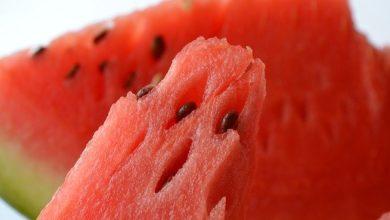 Photo of Sementes de melancia e os seus poderosos benefícios