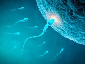Tratamento natural da Infertilidade