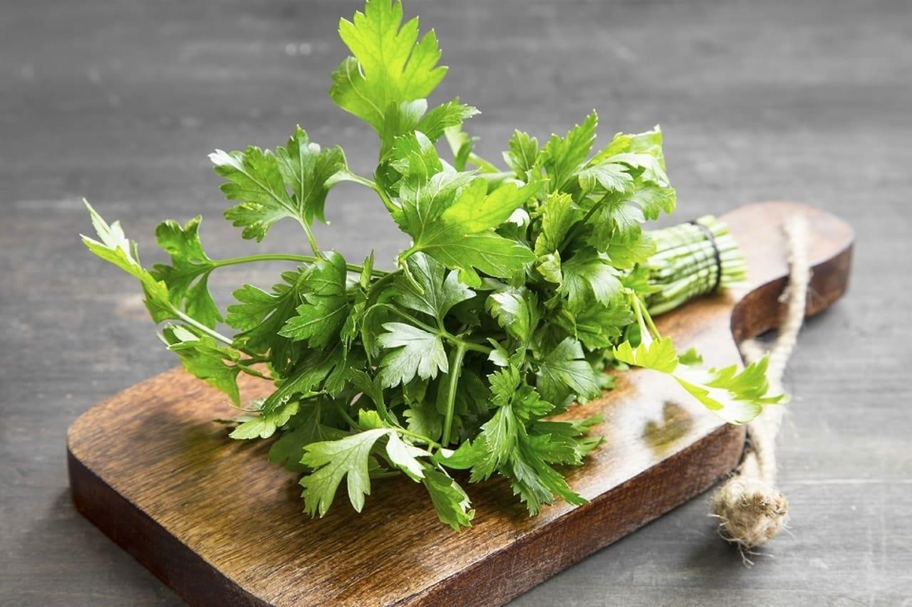 Benefícios da Salsa para a saúde - erva aromática 1