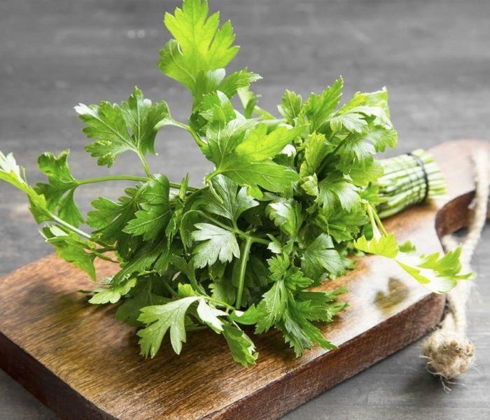 Benefícios da Salsa para a saúde – erva aromática