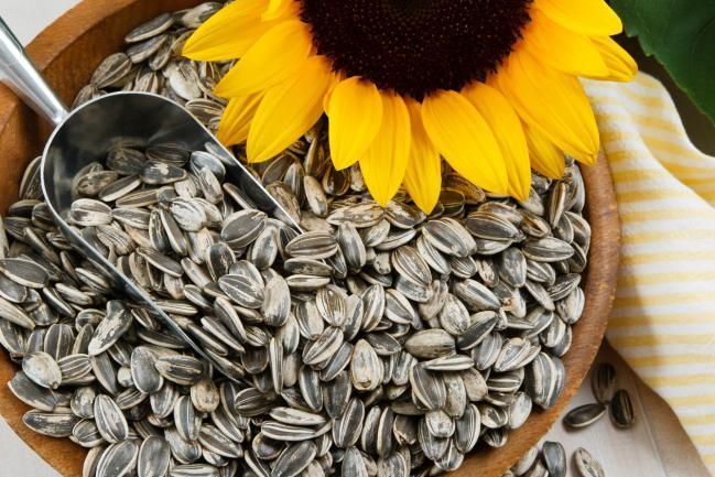 Beneficios das Sementes