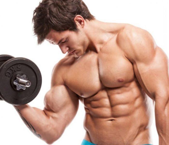 Os melhores suplementos para definição muscular
