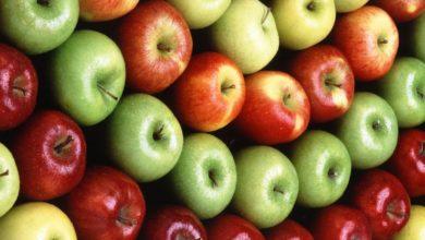 Photo of Benefícios da maçã para a Saúde