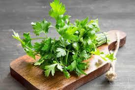 beneficios da salsa para a saude erva aromatica