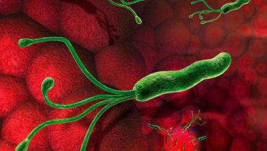 infeccao por helicobacter pylori gastrite cronica